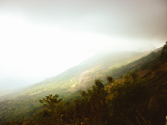 hillview with fog