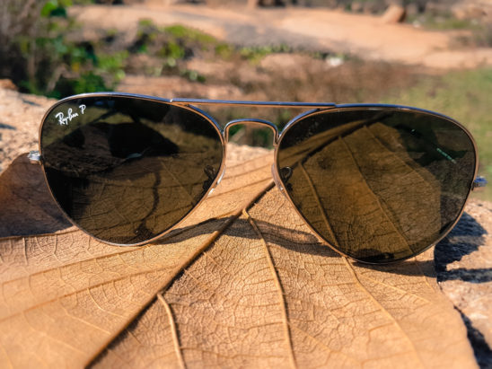Sun glasses on dry leaf