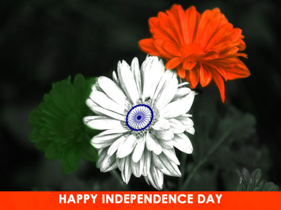 Independence day Tricolor Splash