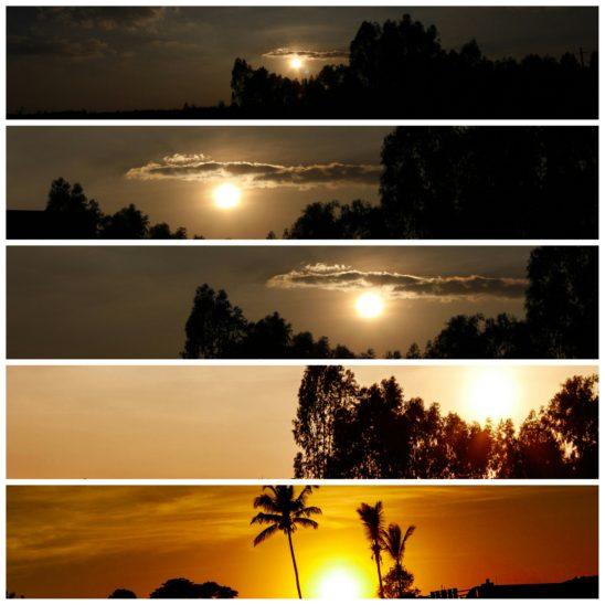 Sunset Collages