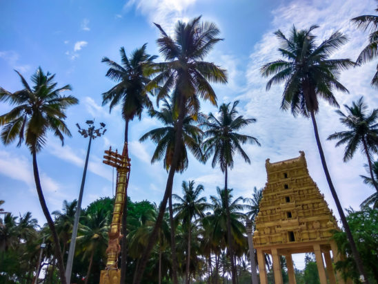 emple gopuram and coconut trees