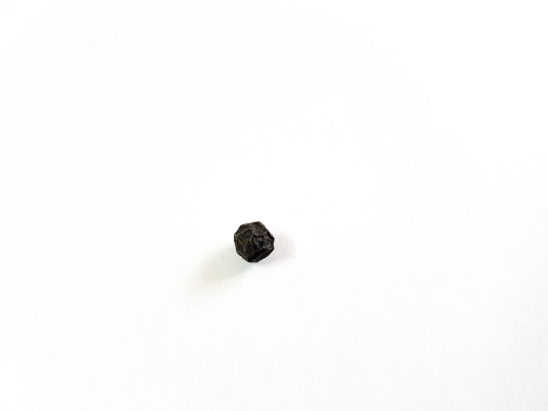 Black pepper seed isolated