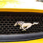 logo of ford mustang