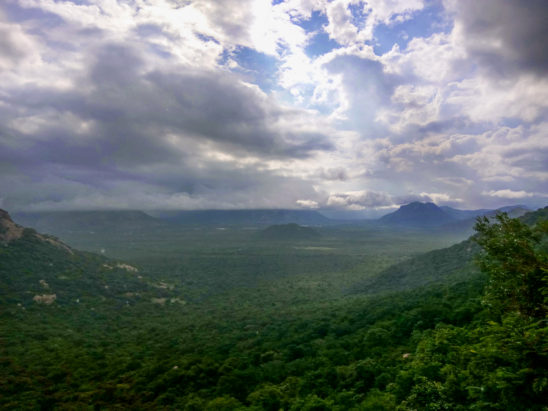 Tirumala Nature