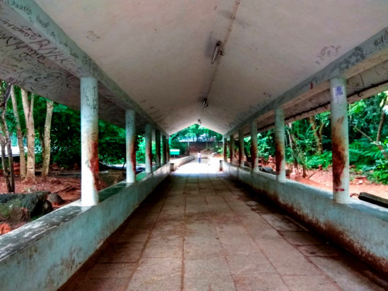 Piligrims walkway in tirumala