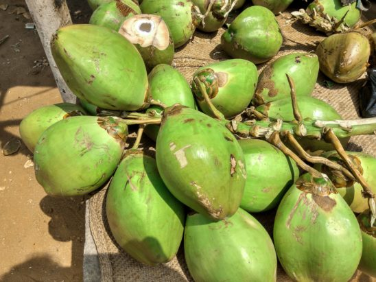 tender coconuts sold on footpaths