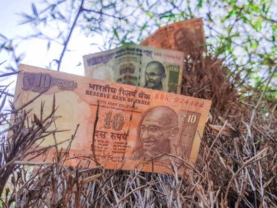 10 rs and 100 rs on grass