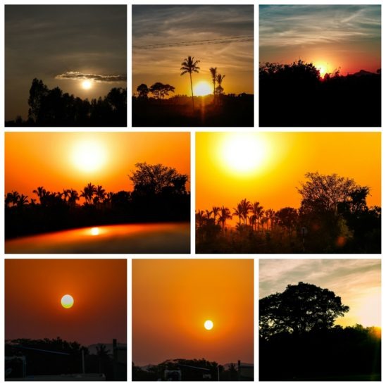 Sunrise Collages