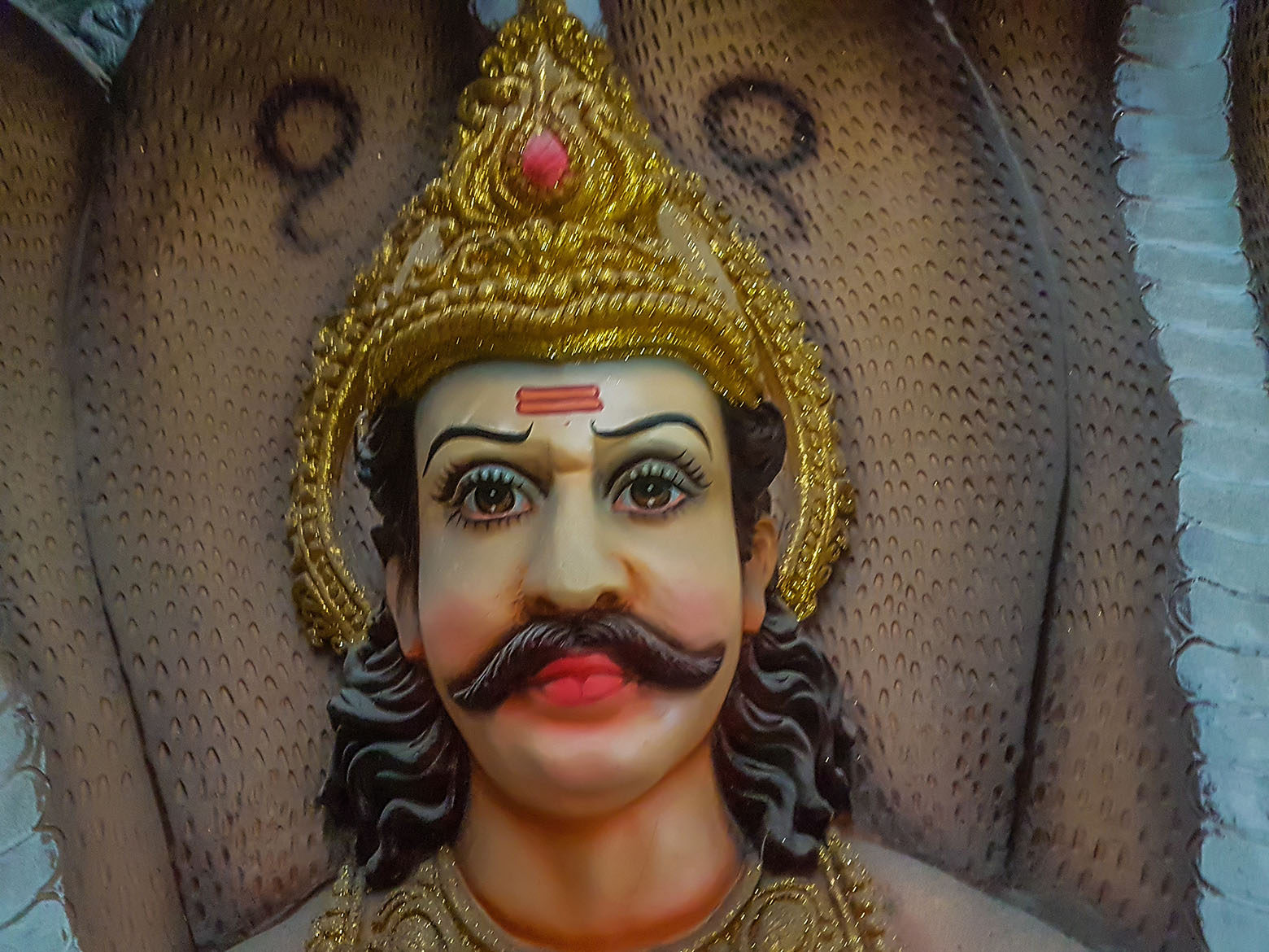 Indian King Idol