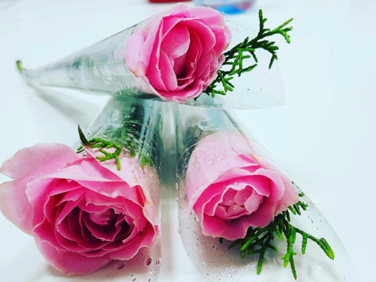 3 pink roses