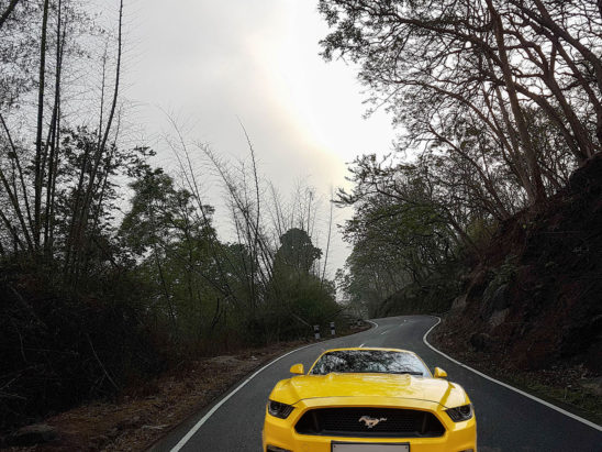 ford mustang on road
