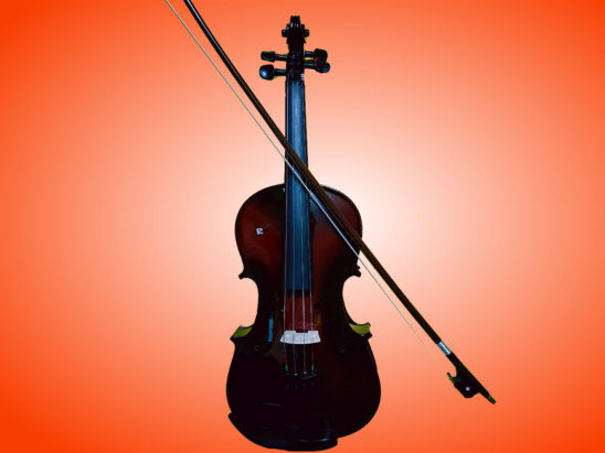 violin musical instrument