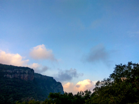 tirumala forest view