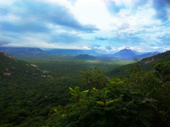 tirumala nature view